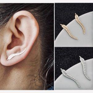 Unique Earrings / Jewelry